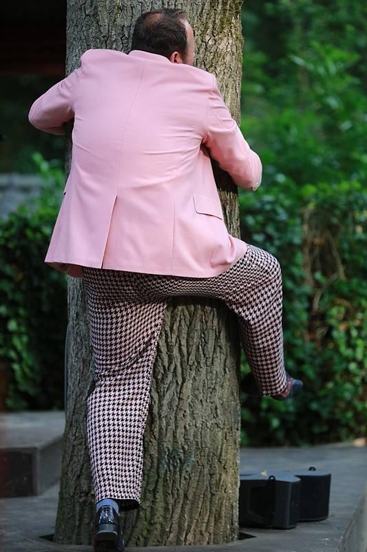 Bert Wijers als Lucentio knuffelt een boom. Getemde Feeks Shakespearetheater Diever 2017